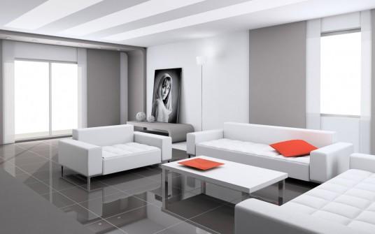 Minimalist Living design